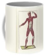 The Science Of Human Anatomy Coffee Mug