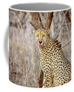 1022 Cheetah Coffee Mug