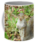 11-2-17--3626 The Appreciative Squarel, Don't Drop The Crystal Ball Coffee Mug