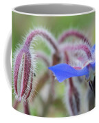 Closeup Of A Colourful Flower Coffee Mug
