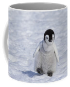 Emperor Penguin Chick Coffee Mug