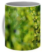 Royal Botanical Garden Of Madrid Coffee Mug