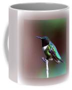 1281 - Hummingbird Coffee Mug