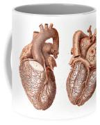 Heart, Anatomical Illustration, 1814 Coffee Mug