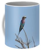 Lilac Breasted Roller On Alert Coffee Mug