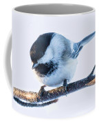 Black Capped Chickadee Coffee Mug