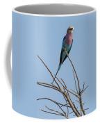 Lilac Breasted Roller 2 Coffee Mug