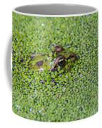 150403p322 Coffee Mug