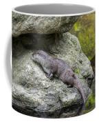 150501p133 Coffee Mug