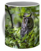 150501p136 Coffee Mug