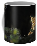 151001p105 Coffee Mug