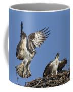 151105p350 Coffee Mug