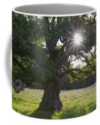 151124p105 Coffee Mug