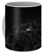 160814-8172 Coffee Mug