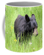 American Black Bear Yellowstone Usa Coffee Mug