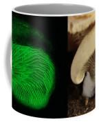 Luminescent Mushroom, Panellus Stipticus Coffee Mug