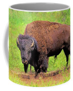 Bison Coffee Mug
