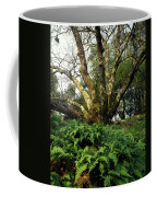 1b6339 Frens And Oaks On Our Mountain Coffee Mug
