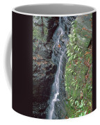 1b6353 Falls On Sonoma Mountain Coffee Mug