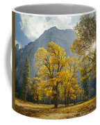 1m6611-oak Trees And Middle Cathedral Rock In Autumn Coffee Mug