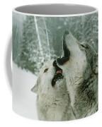 An Alpha Male Gray Wolf, Canis Lupus Coffee Mug by Jim And Jamie Dutcher