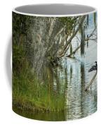 Anhinga Coffee Mug