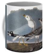 Audubon: Gull Coffee Mug