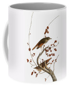 Audubon: Thrush Coffee Mug