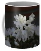 Azalea Flowers Coffee Mug