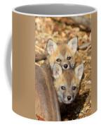 Baby Fox Kits Coffee Mug