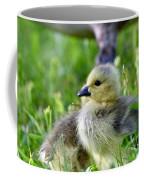 Baby Goose Chick Coffee Mug