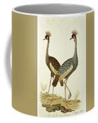 Balearica Regulorum Grey Crowned Crane, Robert Jacob Gordon, 1777 - 1786 Coffee Mug