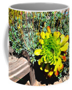 Succulent Study 2 Coffee Mug