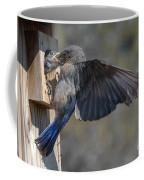 Beak To Beak Coffee Mug