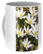 Bloodroot Flowers 2 Coffee Mug