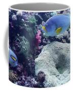 Blue Fish Coffee Mug