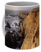 Bodega Head Coffee Mug
