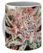Cannabis Macro Coffee Mug
