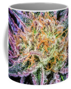 Cannabis Varieties Coffee Mug
