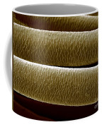 Caribou Hair Coffee Mug