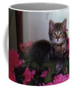 2 Cats In The Flowers Coffee Mug