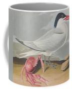 Cayenne Tern Coffee Mug