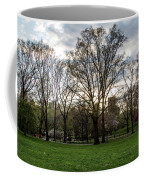 Central Park Views  Coffee Mug
