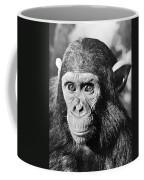 Chimpanzee Coffee Mug