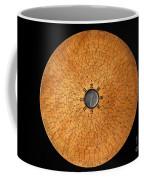 Chinese Geomantic Compass And Perpetual Coffee Mug