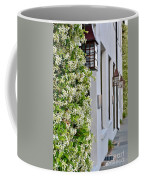 Colonial Home Exterior With Vertical Plants And Old Lanterns Displayed On The Side Of Home Coffee Mug