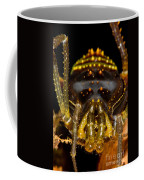 Colorful Harvestman Coffee Mug