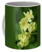 Cowslip Coffee Mug