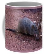 Cute Little One Coffee Mug