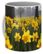 Daffodils In St James Park London Coffee Mug